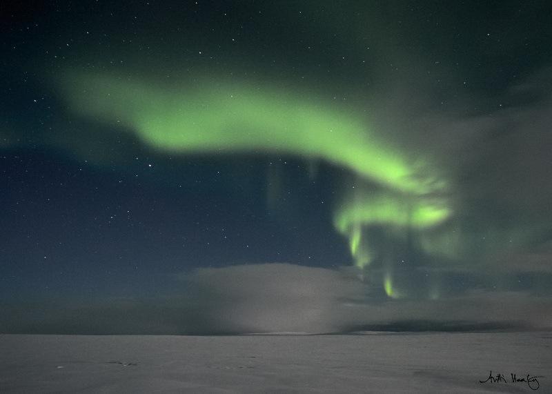 Polar Night in Tundra | ANTTI HAATAJA