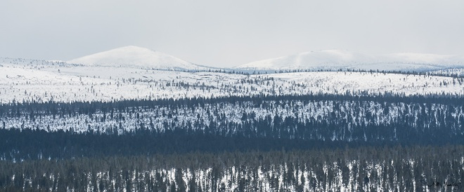 Urho Kekkonen national park calls for fell trips.
